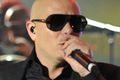 Mundialowy Pitbull w sieci