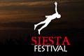Siesta Festival 2014 jeszcze większym sukcesem