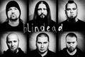 Blindead zagra w Krakowie i Katowicach