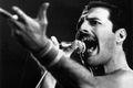 Dzisiaj urodziny Freddie'ego Mercury'ego