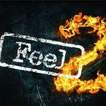 Feel 2