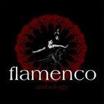 Flamenco Anthology