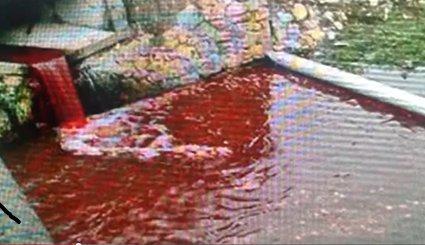 Woda w rzece zmieniła się w krew? Władze zajęły się badaniem zagadkowego zjawiska
