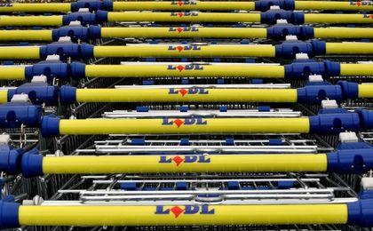 0845e577f1167 Wittchen  Wszystkie nasze torebki w Lidlu zostały wyprzedane - WP Finanse